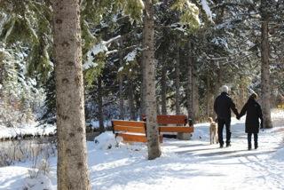 OriginSC - walk on winter path